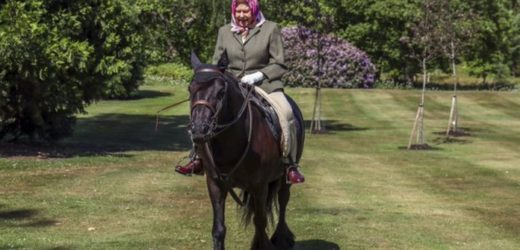 94-year-old queen Elizabeth spotted riding on horseback [photos]